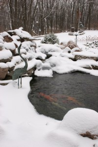Pond Aerator Winter Fish Car Koi Pond Kalamazoo Grand Rapids