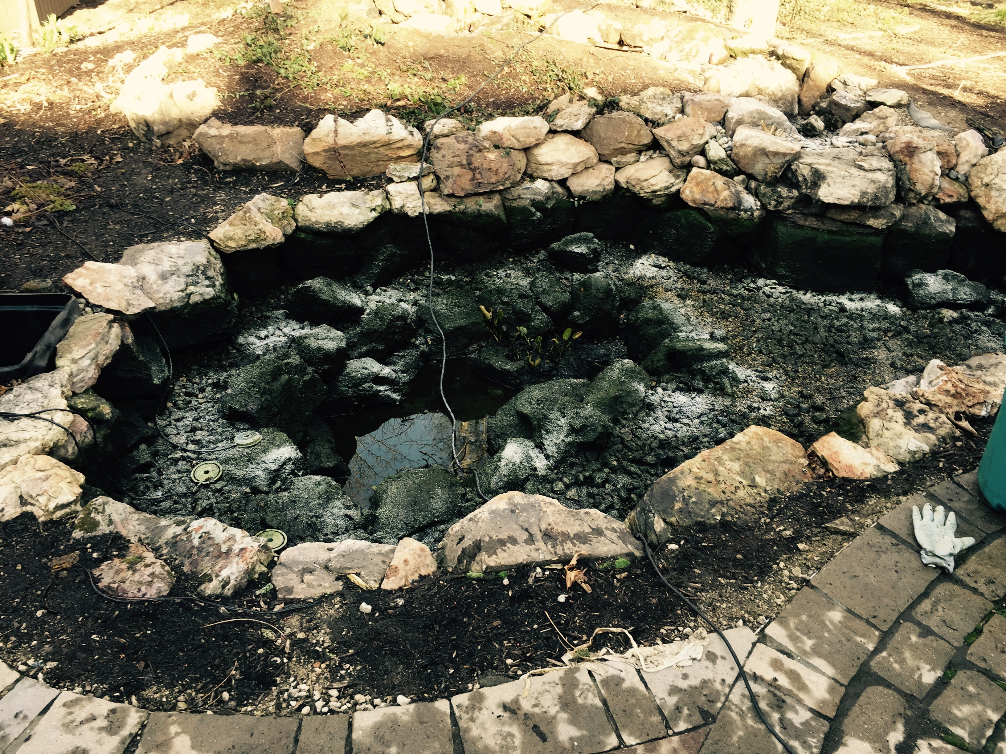 How often do i need to clean my koi pond r a landscaping for Koi pond maintenance near me