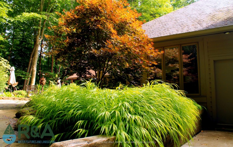 Kalamazoo Shade Garden Landscape Lighting Plants Paths