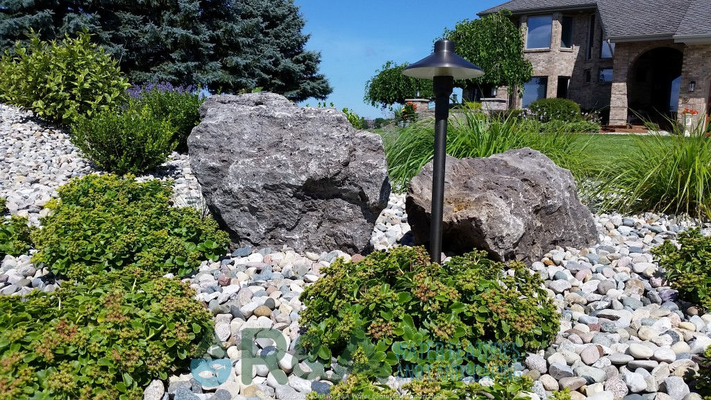 Top 5 drought tolerant plants for your grand rapids for Landscaping rocks grand rapids mi