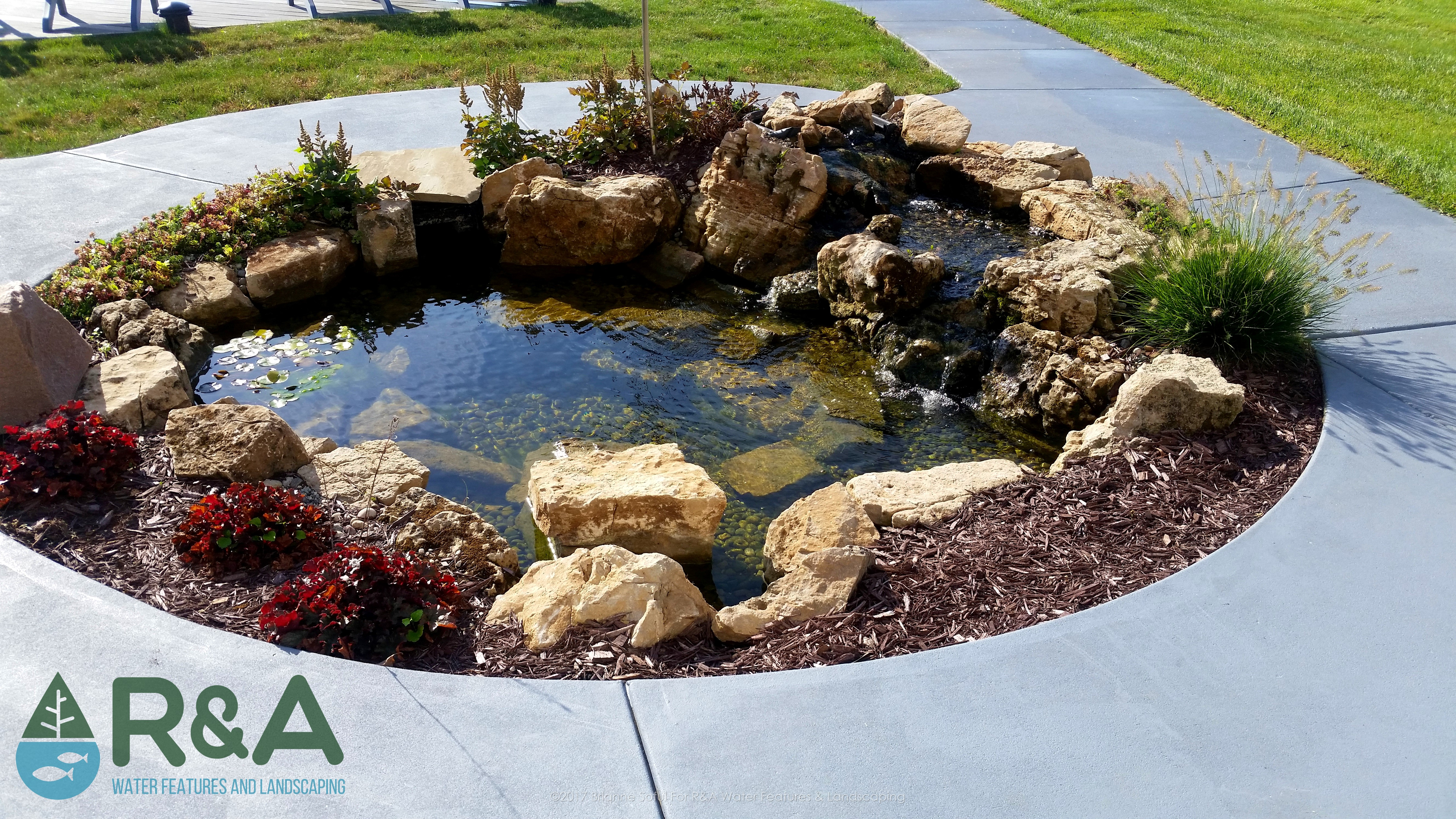 Common koi pond misconception it s too much money r for Koi pond maintenance near me