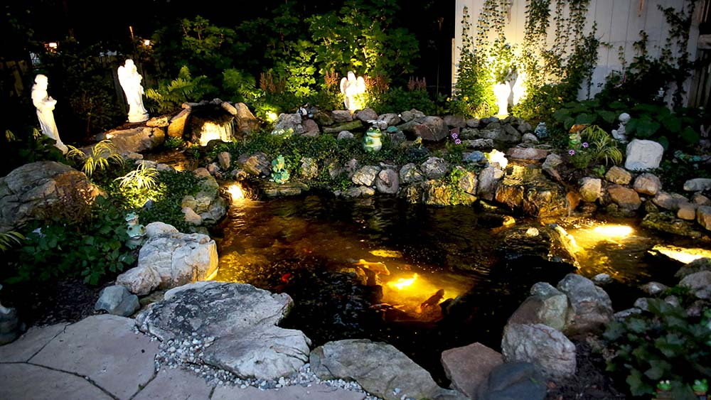 Pond with landscape lighting around it in Kalamazoo MI