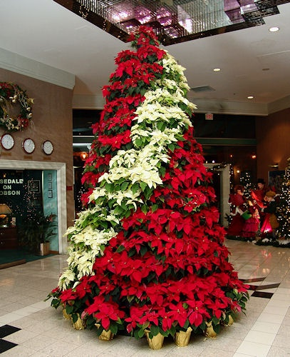 A Guide To Holiday Decorating Business Edition - R&A Landscaping