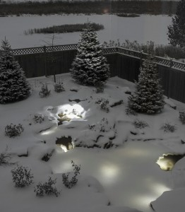 Winter Pond Maintenance Tips Winter Pond Products Kalamazoo Grand Rapids Koi Pond