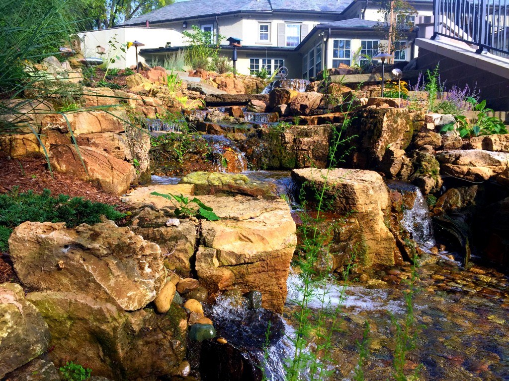 Best Water Feature Contractors In Grand Rapids